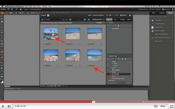 Organizer in Photoshop Elements